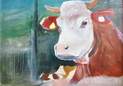 Kühe 2
