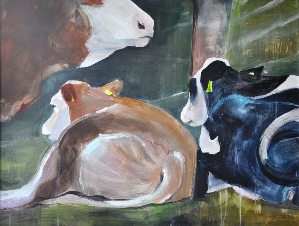 Kühe 1